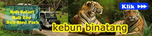 kebun binatang2