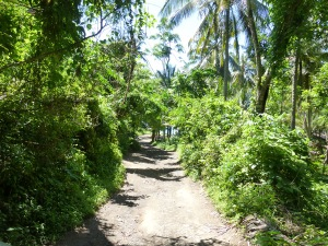 Jalan menuju Virgin beach