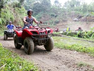 Quad / ATV